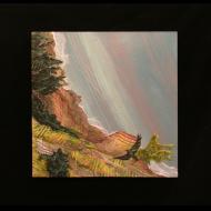 Ann Munson: Bird's Eye View