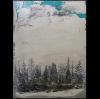 Jim Brown: FOUND LANDSCAPE 04B