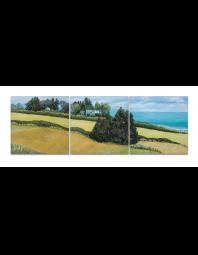 Ann Munson: Whidbey Home, Triptych