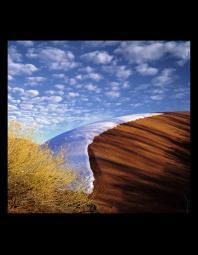 Will Connor: Dune/Melting Snow